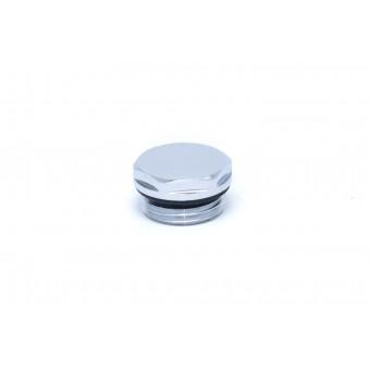 Заглушка с резиновым кольцом НР (хром)